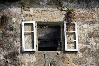 Old windows | Miguel Saavedra